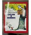 L'indispensabile Calvin e Hobbes