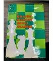 I Grandi maestri degli scacchi